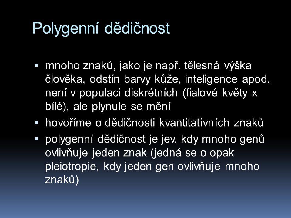 Polygenní dědičnost