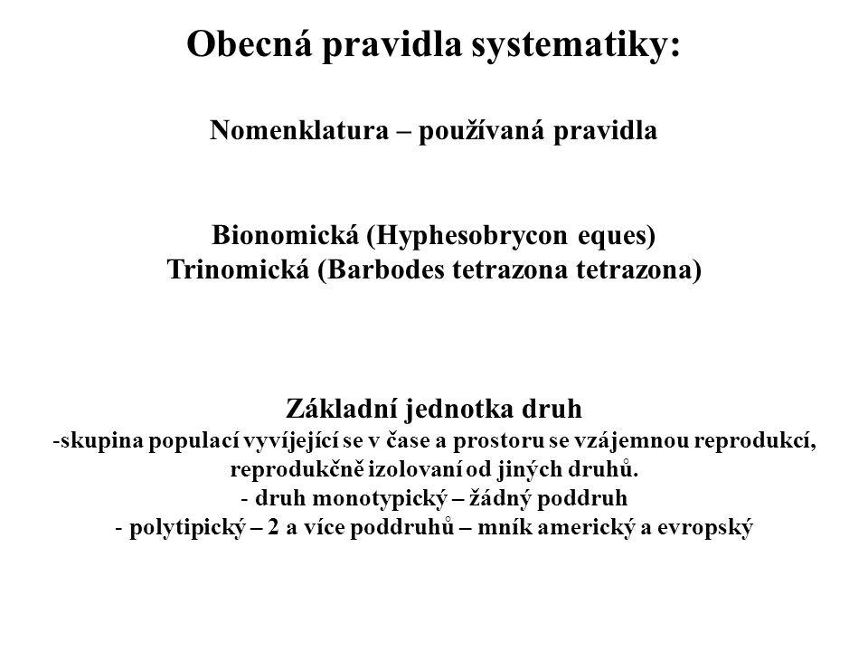 Obecná pravidla systematiky:
