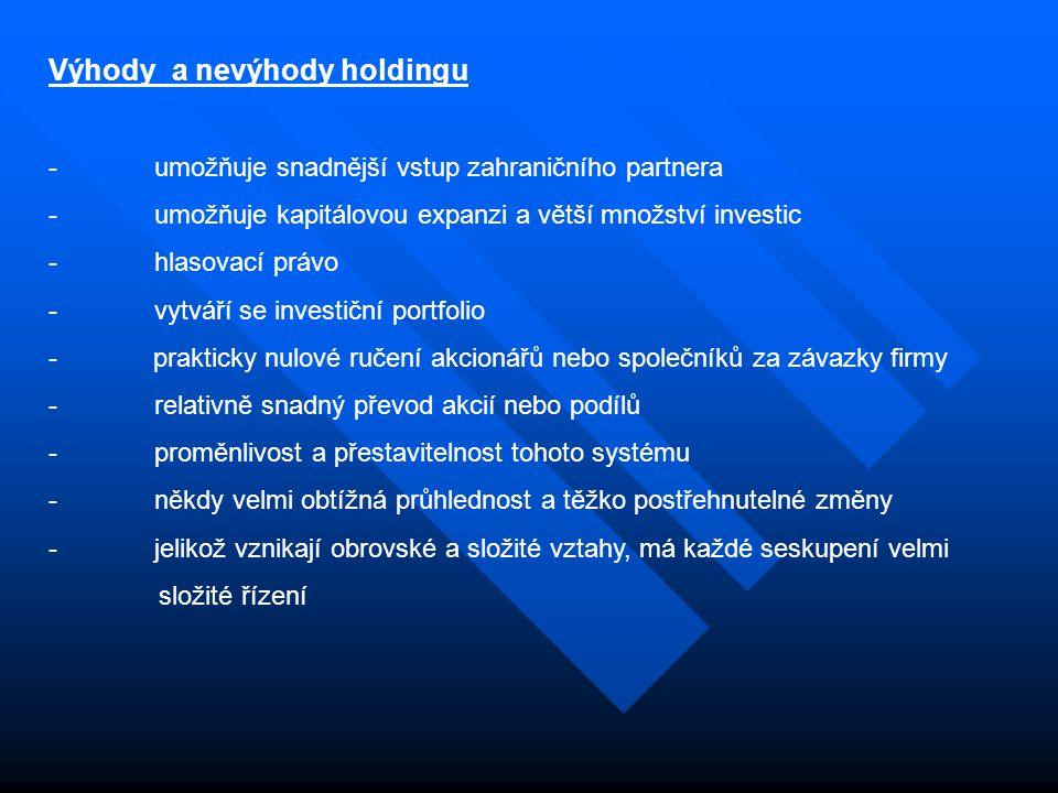 Výhody a nevýhody holdingu