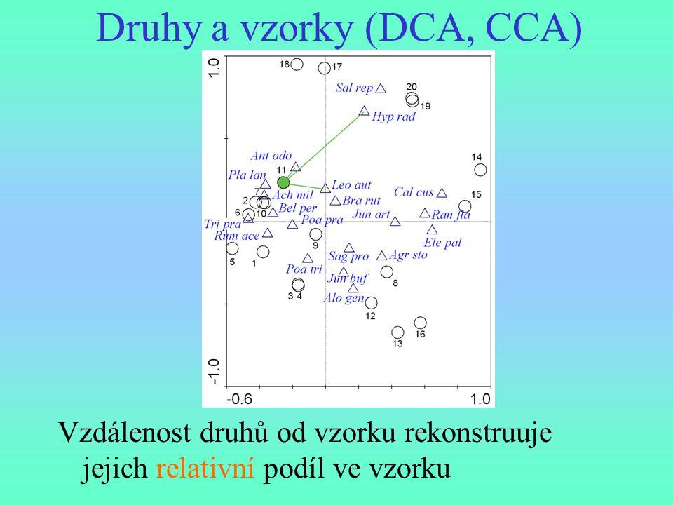 Druhy a vzorky (DCA, CCA)
