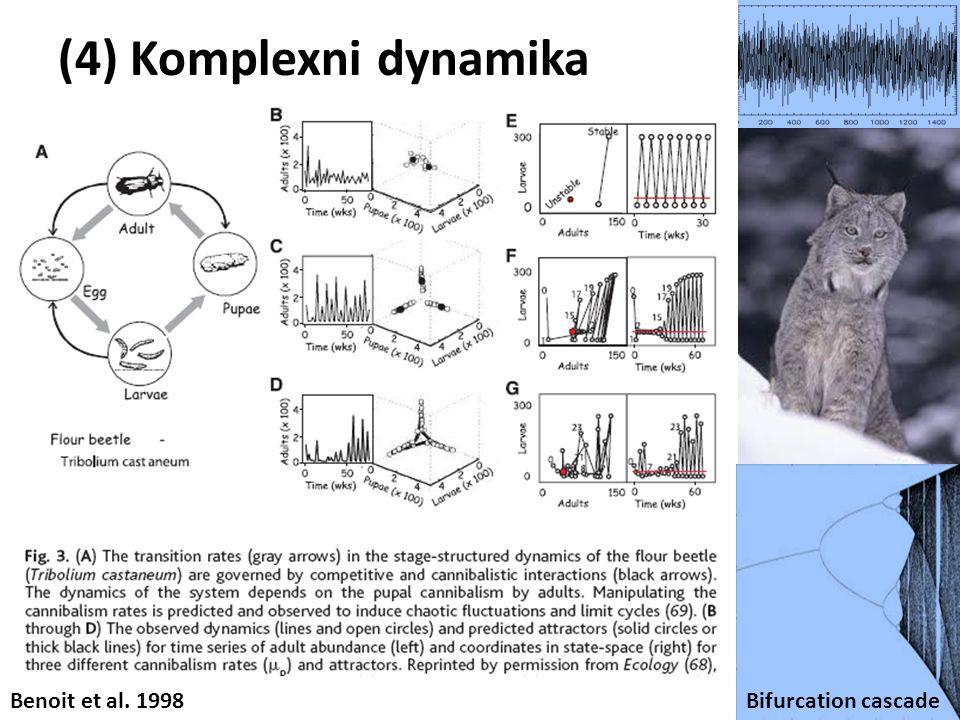 (4) Komplexni dynamika Bifurcation cascade Benoit et al. 1998