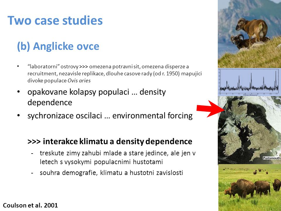 Two case studies (b) Anglicke ovce