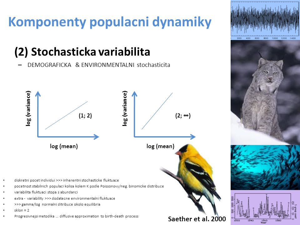 Komponenty populacni dynamiky