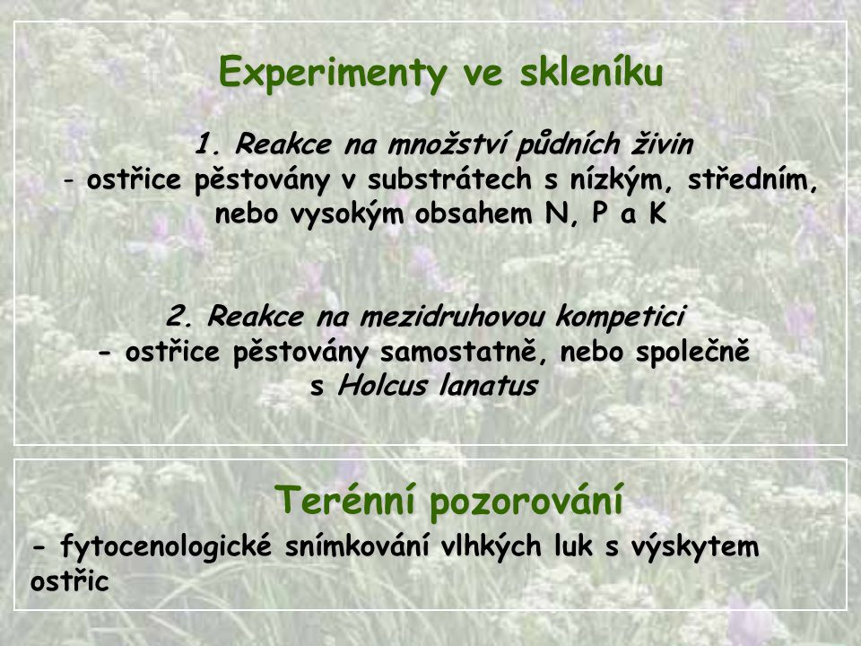 Experimenty ve skleníku