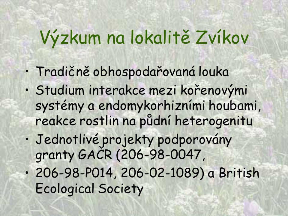 Výzkum na lokalitě Zvíkov