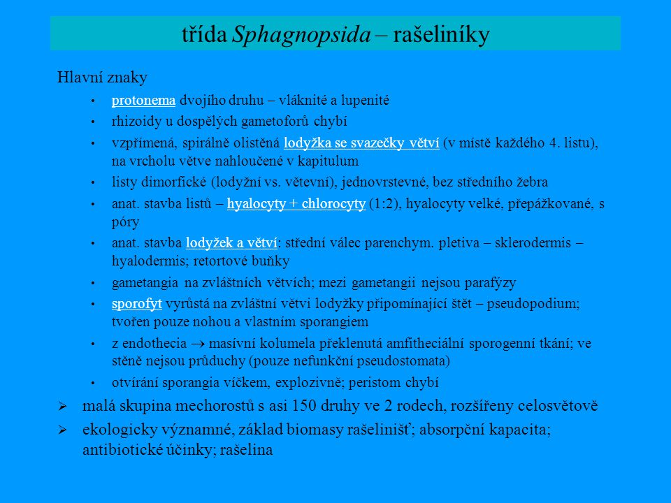 třída Sphagnopsida – rašeliníky