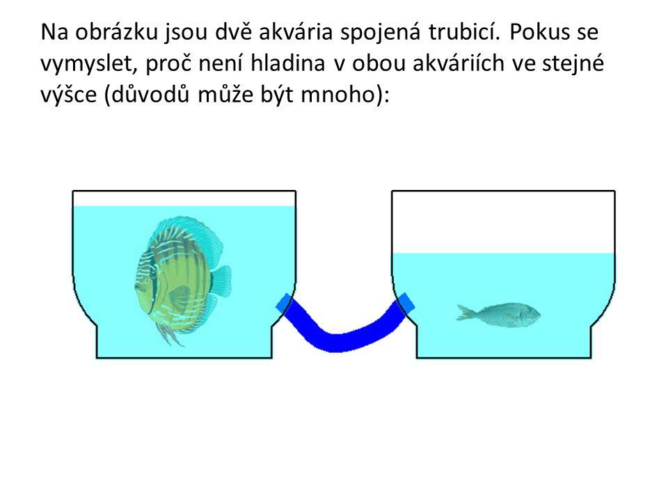 Na obrázku jsou dvě akvária spojená trubicí