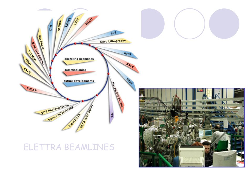 ELETTRA BEAMLINES
