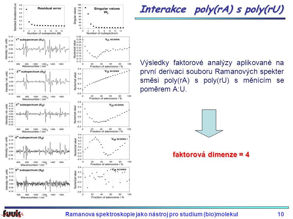 Interakce poly(rA) s poly(rU)