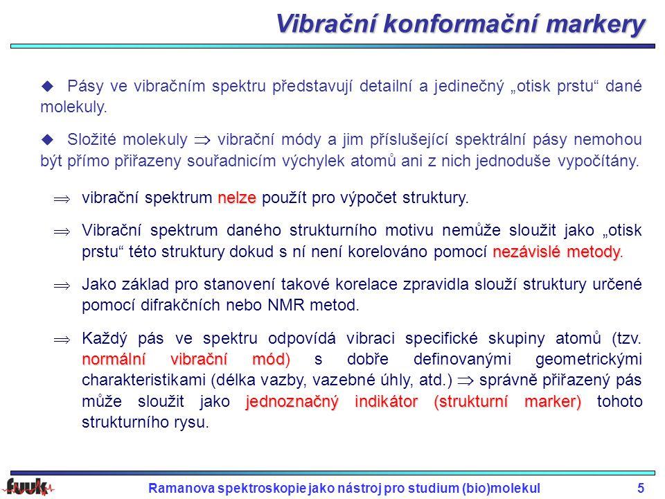 Vibrační konformační markery