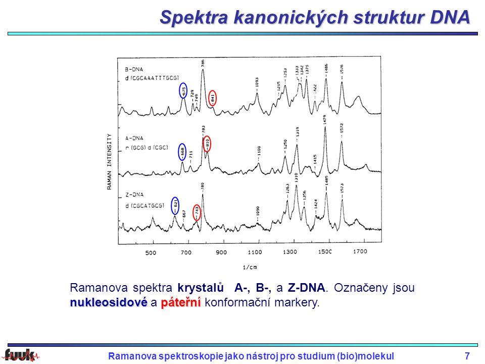 Spektra kanonických struktur DNA