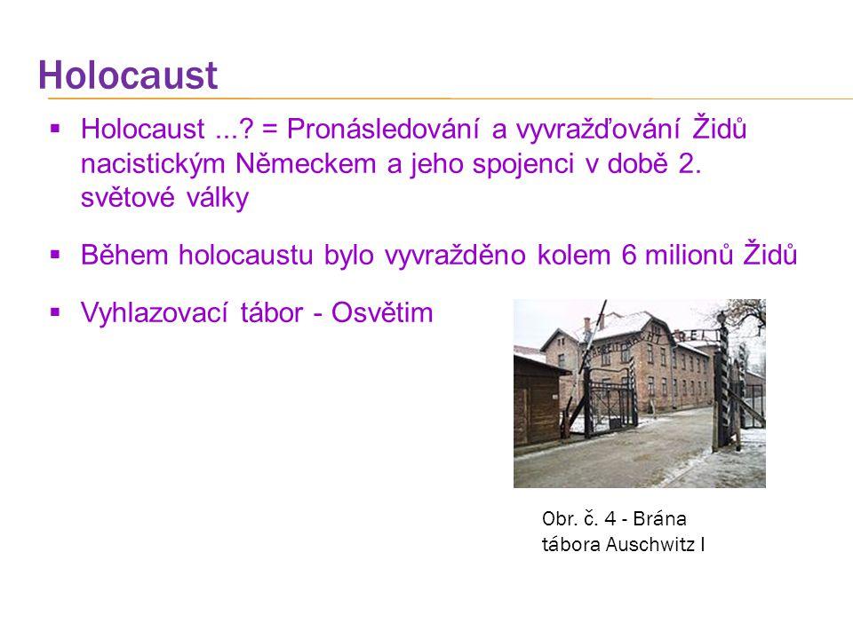 Holocaust Holocaust ... = Pronásledování a vyvražďování Židů nacistickým Německem a jeho spojenci v době 2. světové války.