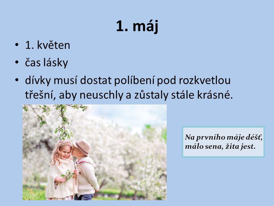 1. máj 1. květen. čas lásky. dívky musí dostat políbení pod rozkvetlou třešní, aby neuschly a zůstaly stále krásné.