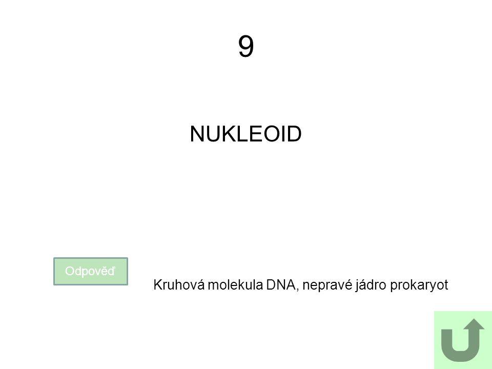 9 NUKLEOID Odpověď Kruhová molekula DNA, nepravé jádro prokaryot