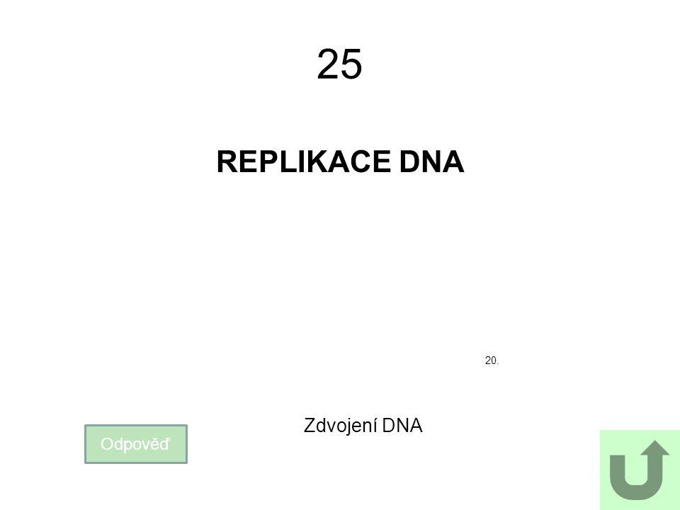 25 REPLIKACE DNA 20. Zdvojení DNA Odpověď