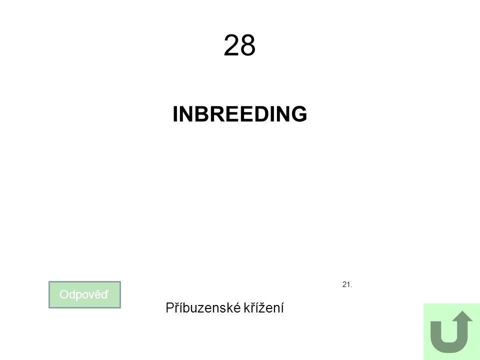 28 INBREEDING 21. Odpověď Příbuzenské křížení