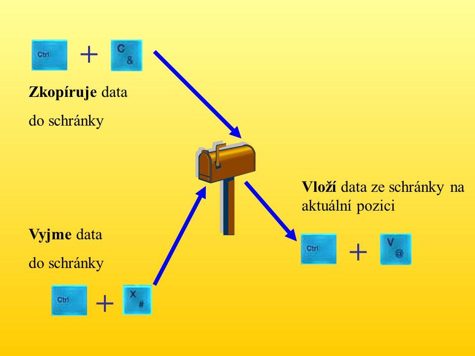 + + + Zkopíruje data do schránky