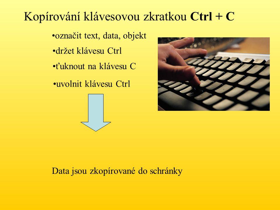 Kopírování klávesovou zkratkou Ctrl + C