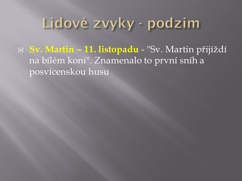 Lidové zvyky - podzim Sv. Martin – 11. listopadu - Sv.