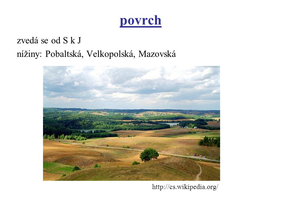 povrch zvedá se od S k J nížiny: Pobaltská, Velkopolská, Mazovská