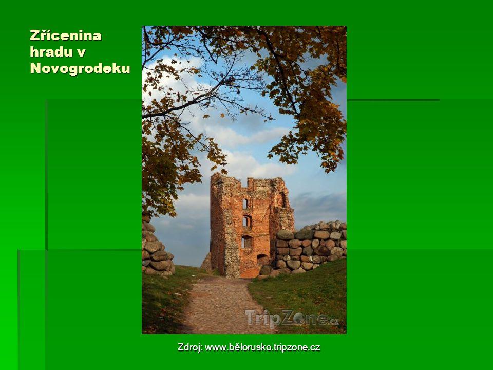 Zřícenina hradu v Novogrodeku