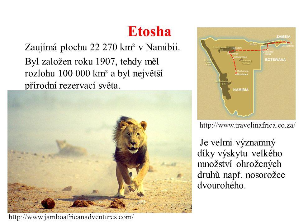 Etosha Zaujímá plochu 22 270 km² v Namibii.