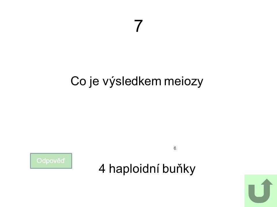 7 Co je výsledkem meiozy 6. Odpověď 4 haploidní buňky