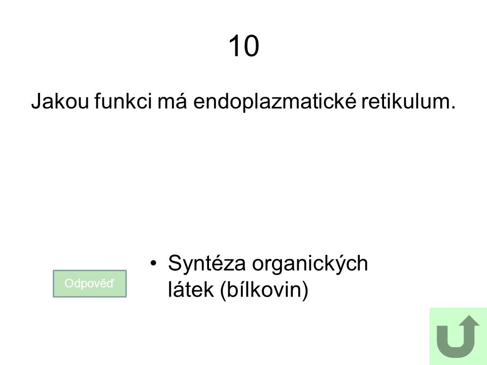 Jakou funkci má endoplazmatické retikulum.
