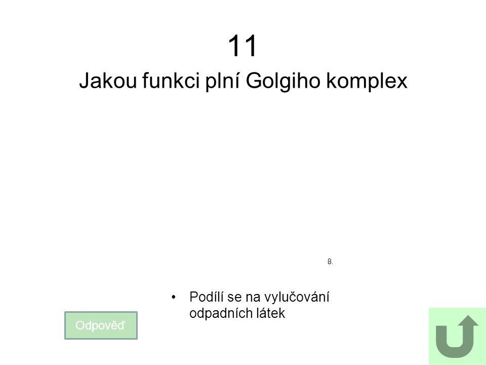 Jakou funkci plní Golgiho komplex