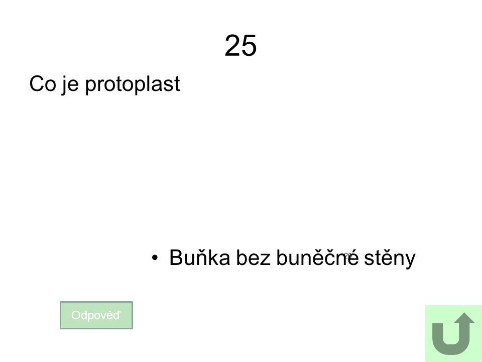 25 Co je protoplast Buňka bez buněčné stěny 20. Odpověď