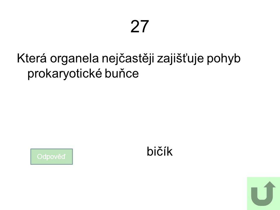27 Která organela nejčastěji zajišťuje pohyb prokaryotické buňce bičík