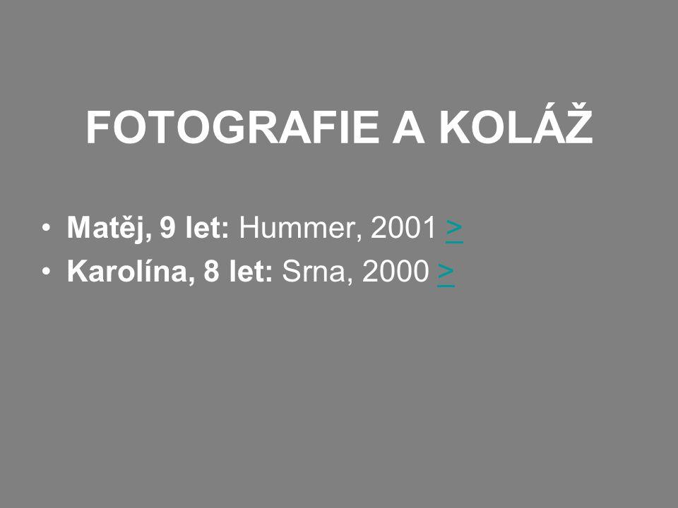 FOTOGRAFIE A KOLÁŽ Matěj, 9 let: Hummer, 2001 >