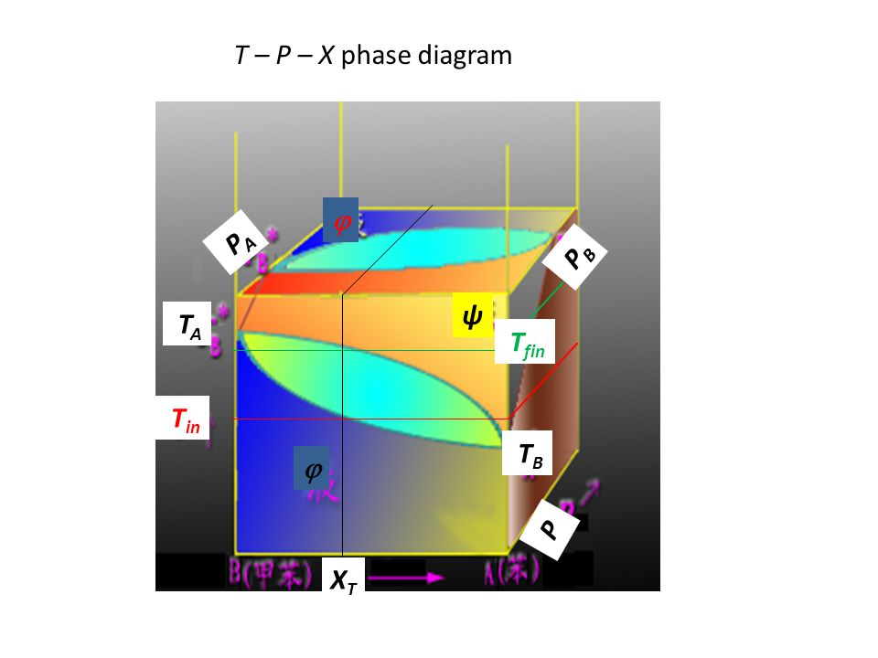 T – P – X phase diagram  PA PB ψ TA Tfin Tin TB  P XT