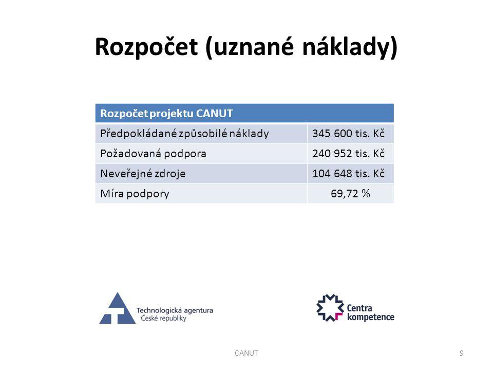 Rozpočet (uznané náklady)