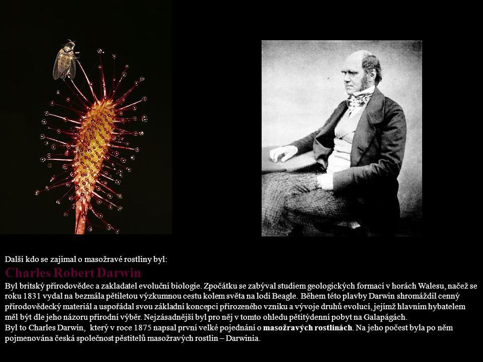 Charles Robert Darwin Další kdo se zajímal o masožravé rostliny byl: