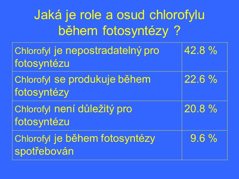 Jaká je role a osud chlorofylu během fotosyntézy