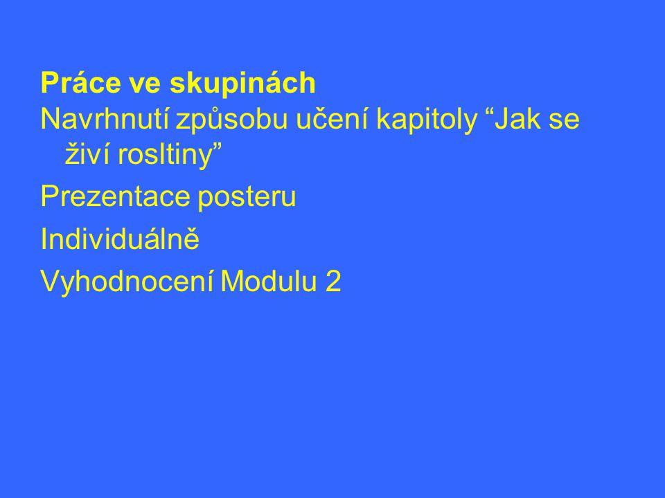Práce ve skupinách Navrhnutí způsobu učení kapitoly Jak se živí rosltiny Prezentace posteru. Individuálně.
