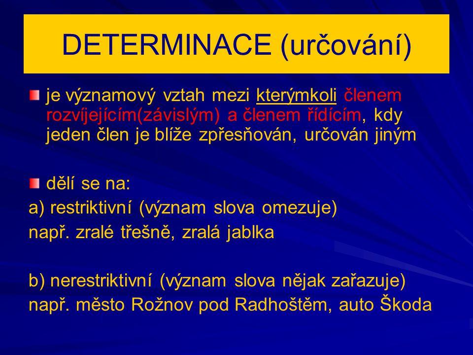 DETERMINACE (určování)