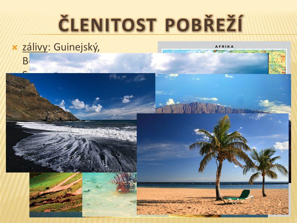 Členitost pobřeží zálivy: Guinejský, Beninský, Adenský, Velká Syrta a Malá Syrta. průliv: Gibraltarský, Mosambický.