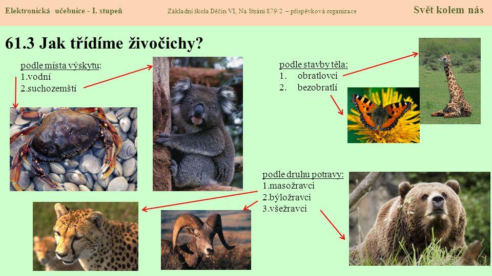61.3 Jak třídíme živočichy podle místa výskytu: podle stavby těla: