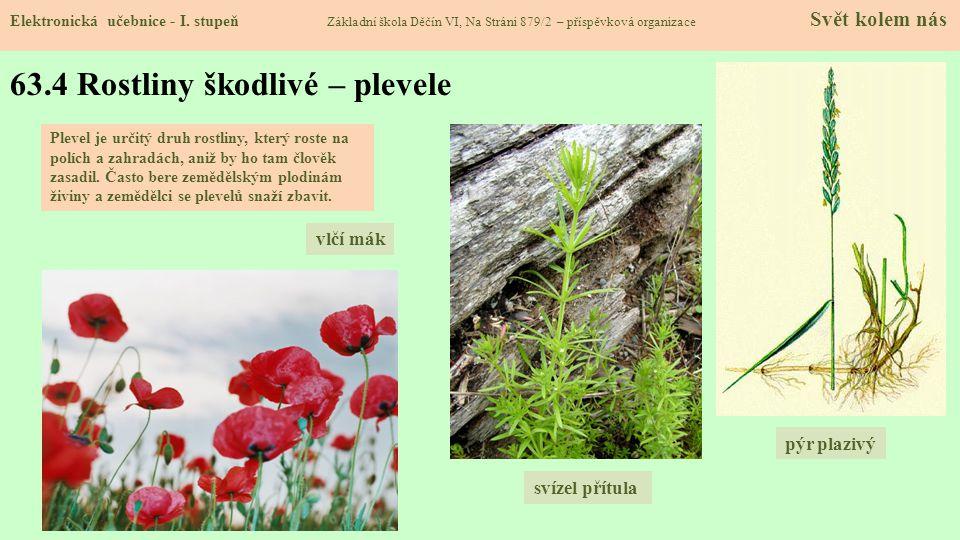 63.4 Rostliny škodlivé – plevele
