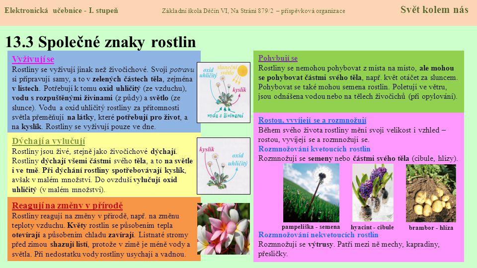 13.3 Společné znaky rostlin