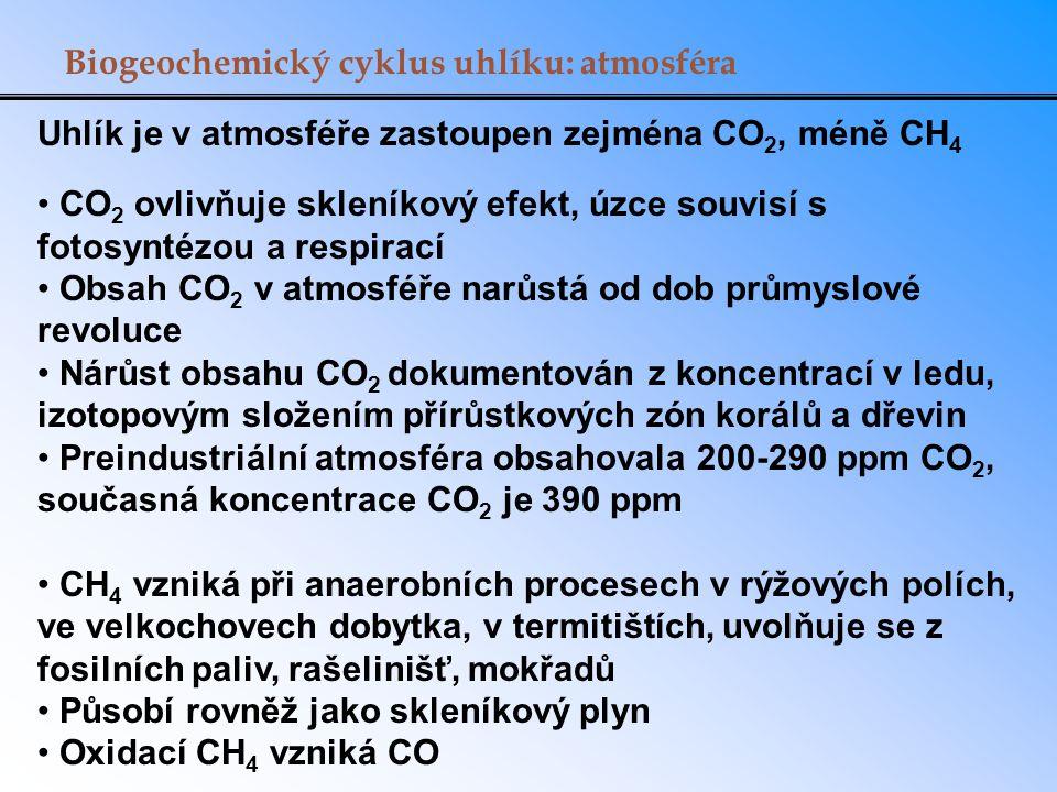 Biogeochemický cyklus uhlíku: atmosféra