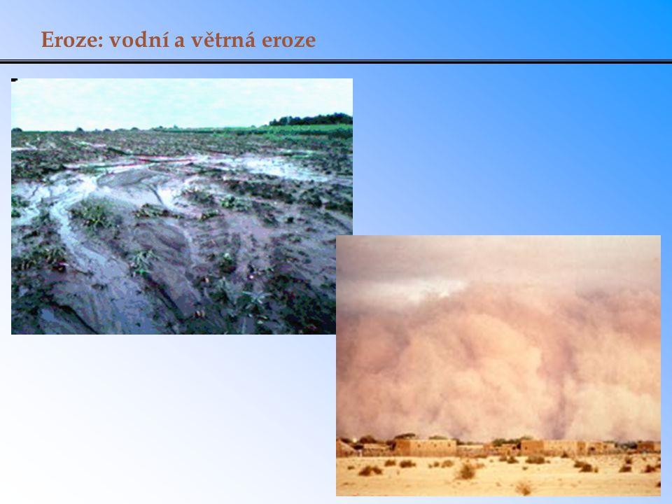 Eroze: vodní a větrná eroze