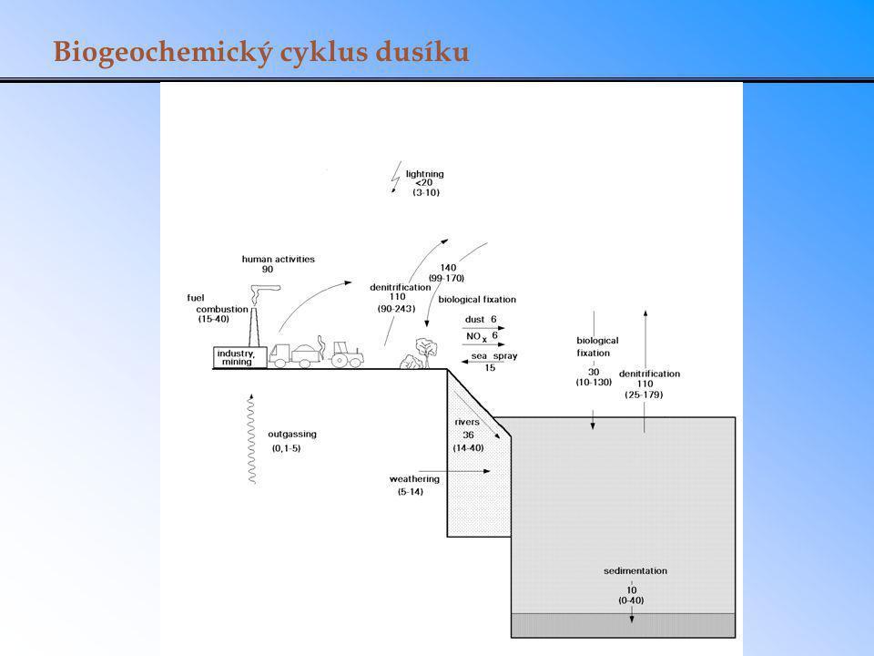 Biogeochemický cyklus dusíku