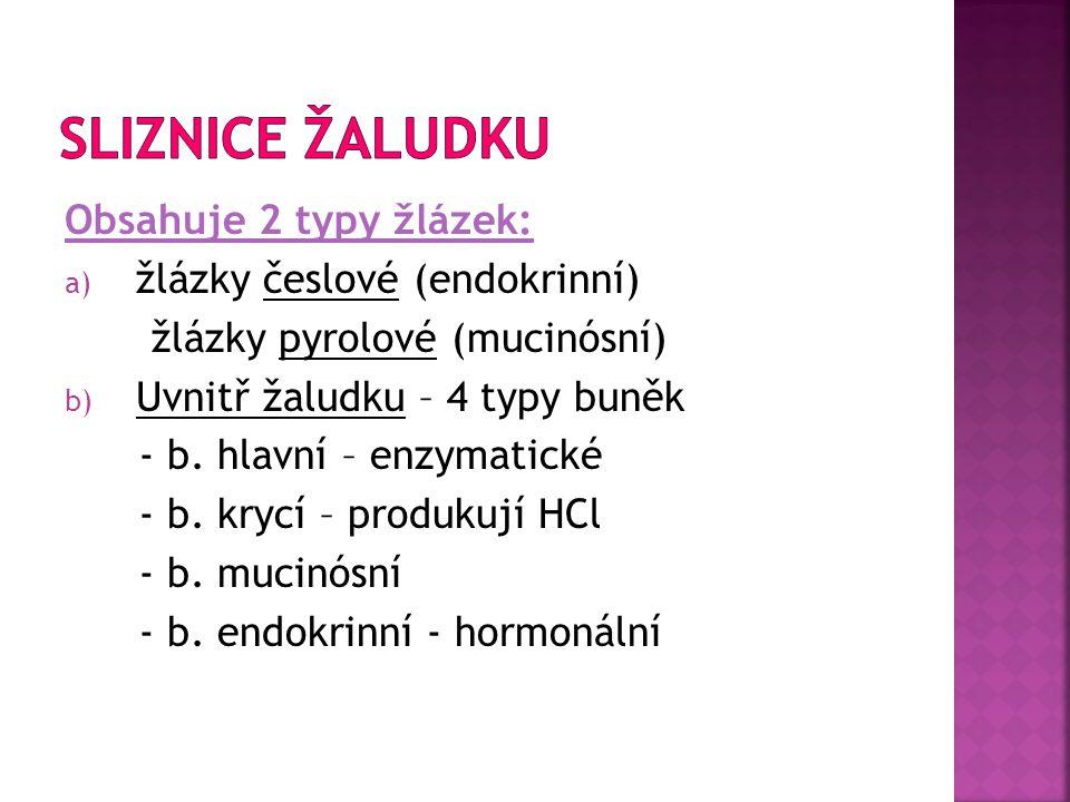 SLIZNICE ŽALUDKU Obsahuje 2 typy žlázek: žlázky česlové (endokrinní)