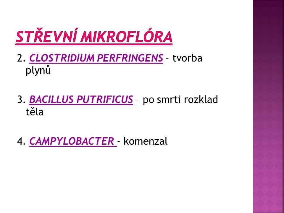 STŘEVNÍ MIKROFLÓRA 2. CLOSTRIDIUM PERFRINGENS – tvorba plynů 3.