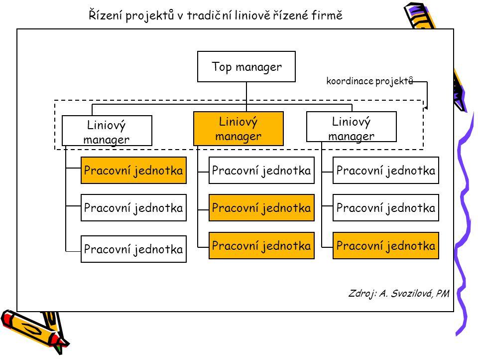 Řízení projektů v tradiční liniově řízené firmě