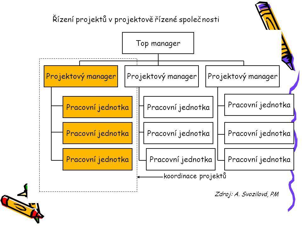 Řízení projektů v projektově řízené společnosti