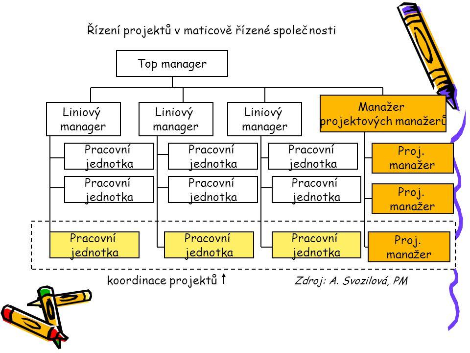 Řízení projektů v maticově řízené společnosti